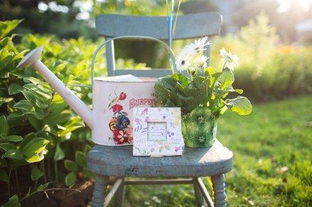 View More: http://alisonmariephotography.pass.us/bowtiesandbutterfliesshoot