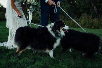Bailey-Dana-Wedding-259
